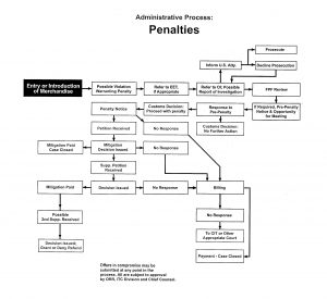 A chart showing how the administrative process for penalties is supposed to be conducted by CBP
